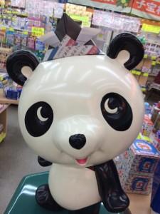 パンダもかぶとをかぶってみましたよ。